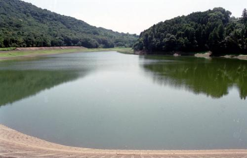 蒲生の池: 観光スポット [公園] ...